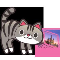 TRAVEL CAT FLIGHTS 4